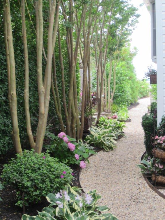 Patchogue Garden Walk 2016 026